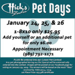 Pet Flier Web19