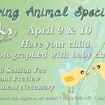 Spring Special 2021em